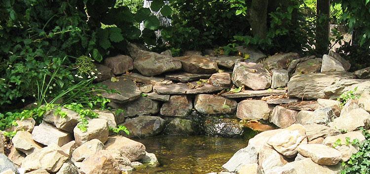Lebensraum Steingarten